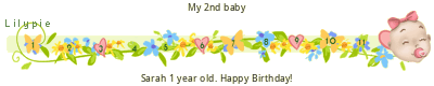 Sarah First Birthday tickers