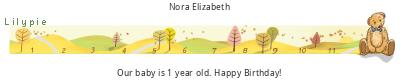 Lilypie First Birthday (rR2u)