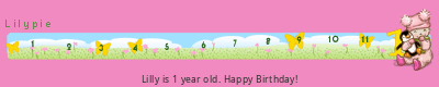 Lilypie First Birthday tickers